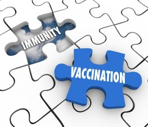 Vaccination word on puzzle piece and hole with Immunity to illus